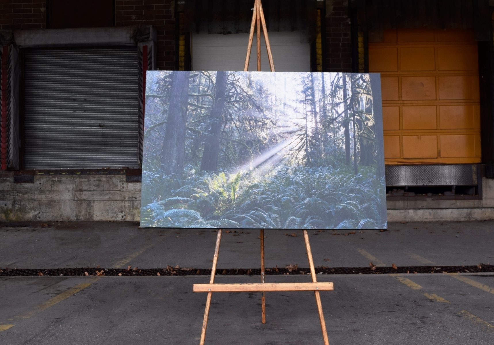 "unveiled 45"" x 32"" limited edition archival print hand mounted on wood"