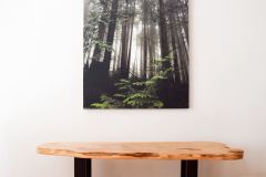 "forest fog 36"" x 48"" limited edition archival print hand mounted on wood"